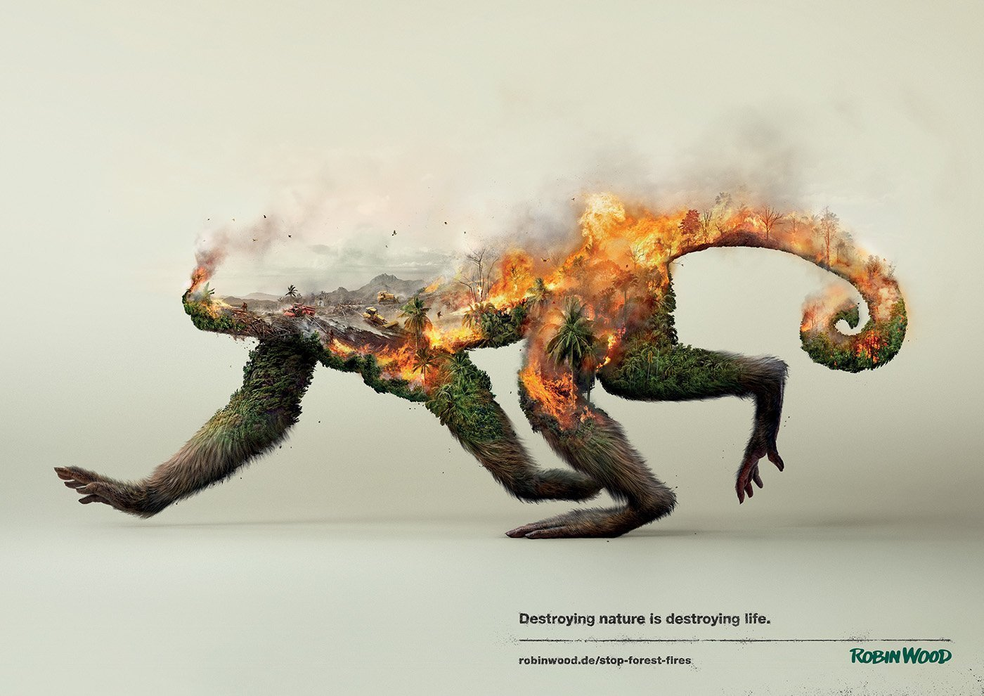 Social advertising forest monkey burning